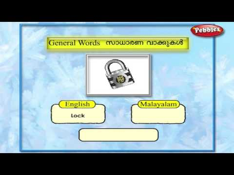 Learn Malayalam Through English   Lesson - 05 General Words   Vocabulary