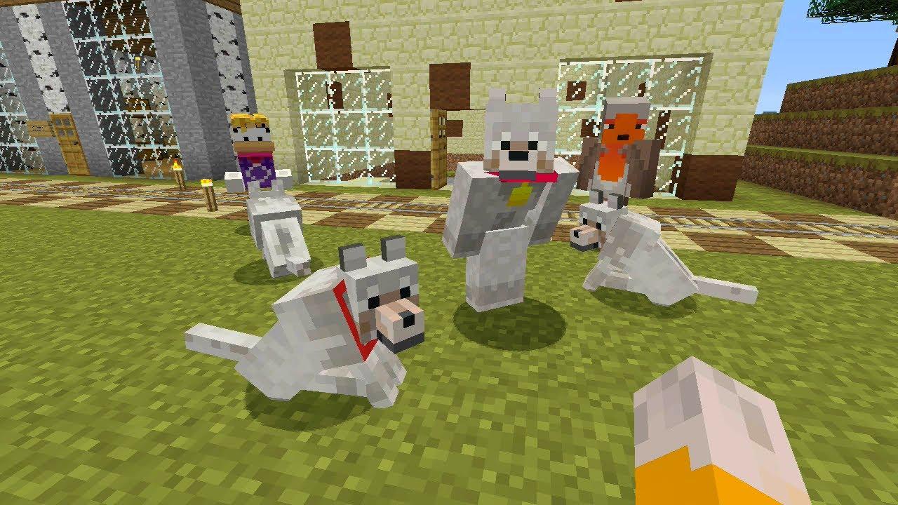 Minecraft Stampy Dog Names