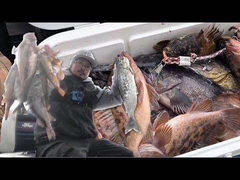Half Moon Bay Trolling For Salmon And Bottom Fishing
