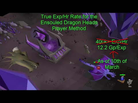 Testing Ensouled Dragon Heads True Exphr 330k Prayer Exp Oldschool
