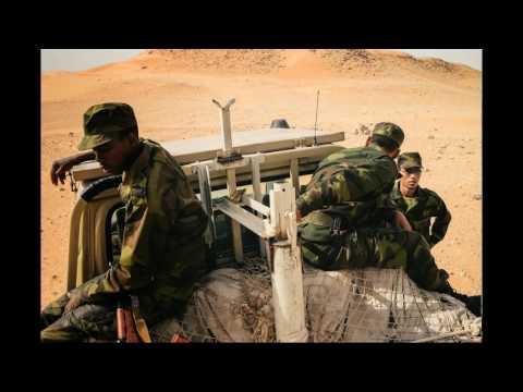 Face à l'absence du soutien financier, le Polisario sévit dans le banditisme et le terrorisme