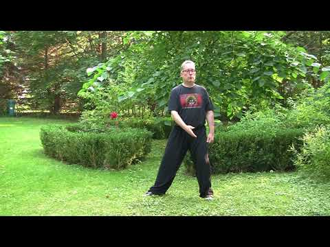 Taijiquan Foundations Volume 2, Introduction to Silk Reeling. Excerpts