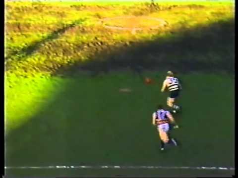 FNWB.com.au - 1985: Round 14, Geelong Vs Footscray