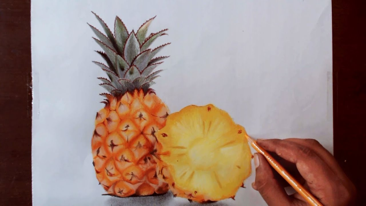 realistic pineapple drawing. realistic pineapple drawing i