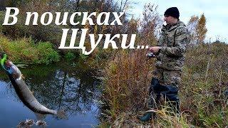 Ловим щуку на реке Где искать щуку осенью Джиг Щука в октябре