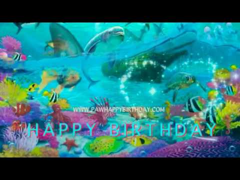 Happy Birthday Wolf Postcard from YouTube · Duration:  2 minutes 21 seconds