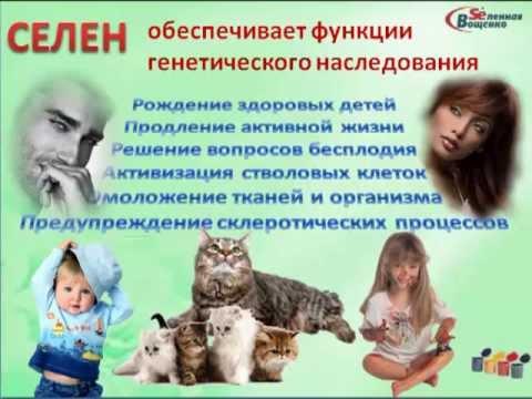 Сиропы Вощенко - Вселенная Вощенко