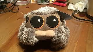 Lucas The Spider Plushie