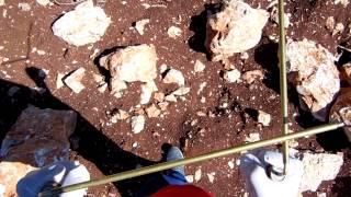 Kalhiyu L rods find silver coin  Gümüs para