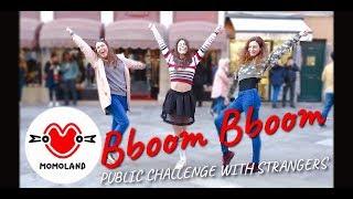 [KPOP PUBLIC CHALLENGE] DANCE WITH STRANGERS! MOMOLAND(모모랜드) BBoom BBoom(뿜뿜) Dance Cover