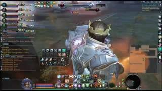 Aion 5.0 Adma Falls Easy Boss Fight Guide