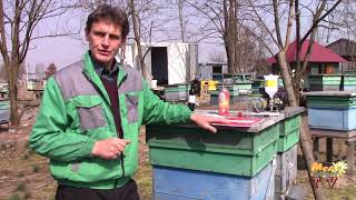 Пасічники Не отруюйте своїх бджіл