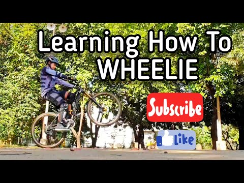 Learning How To WHEELIE a Mountain Bike | Progression session | Essential MTB Skills