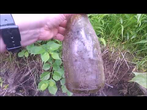 Fun in the River... Antique Bottle Hunting!