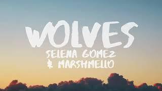 Selena Gomez, Marshmello   Wolves for 1 hour