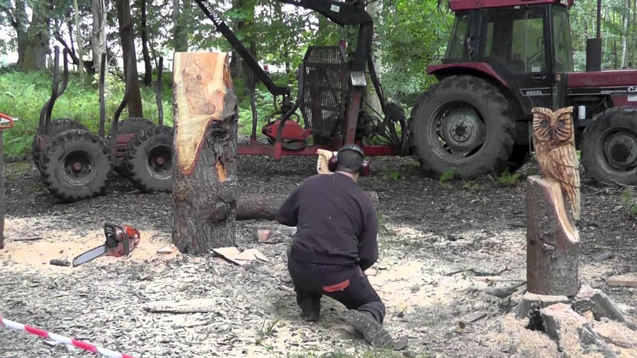 Tree sculpt wood carved barn owl with chainsaw amazon
