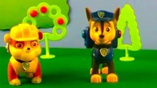 Cuccioli e gli animali del bosco- Paw Patrol episodi in italiano