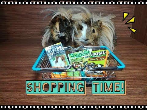 Guinea Pig Yem Alışverişi | Guinea Pig Food Shopping | Jungle, Gold Wings, Tropifit and Polo