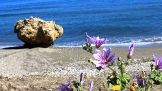 Crete 2014(, 2014-05-10T18:47:13.000Z)