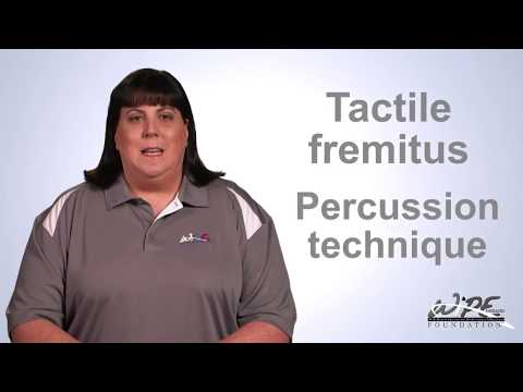 Percussion And Tactile Fremitus Lung Examination