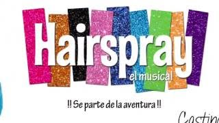 Casting Hairspray 2016