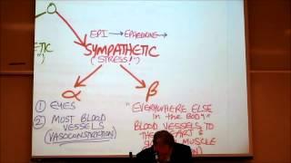 AUTONOMIC DRUGS; PART 3; Alpha & Beta Adrenergic Agonists by Professor Fink
