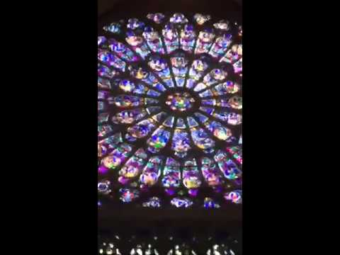 Notre Dame Stained Glass Windows Gothic Architecture Part 2