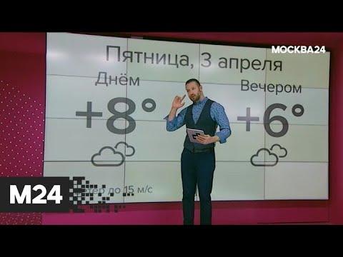 """""""Погода"""": теплая погода вернулась в столицу - Москва 24"""