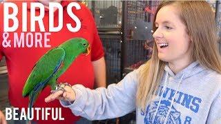 My Favorite Pet Store Tour & Holding Birds