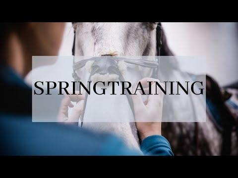 Springtraining bei Jordi Sander / Kommentare vom Trainer