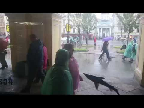 Невский проспектФото