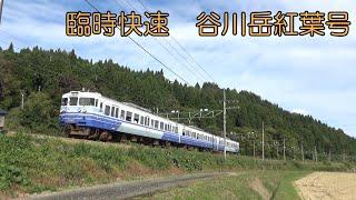 上越線・ほくほく線 (快速 谷川岳紅葉号 115系、E129系、HK100形) 2020.10.18