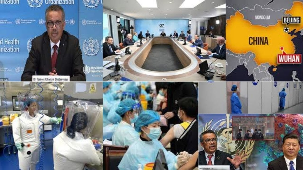 WHO chief asks China to cooperate with COVID-19 origins probe