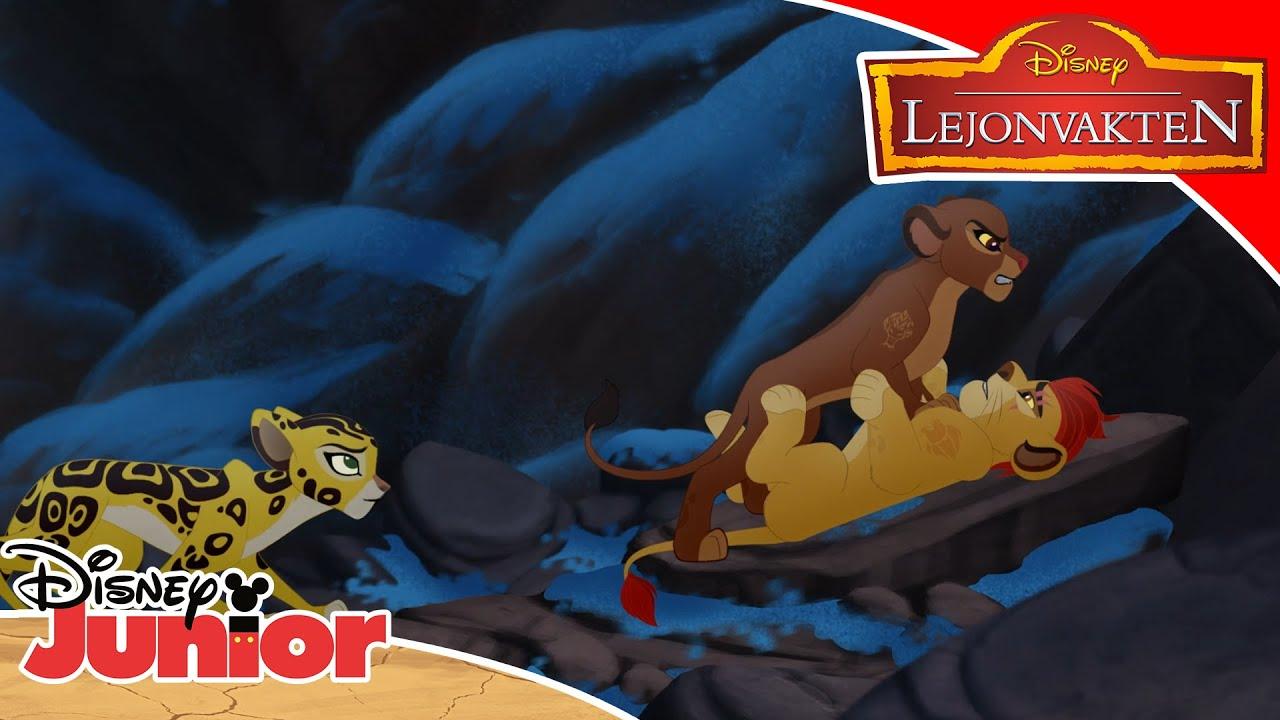 Lejonvakten | Livets träd 🌴 | Disney Junior Sverige