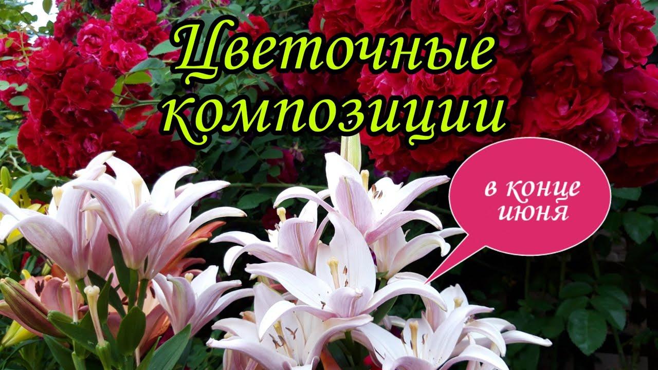 Цветочные вазоны в конце июня.Вазоны для цветов своими руками.Сад.Дача.Лето.Ландшафтный дизайн.