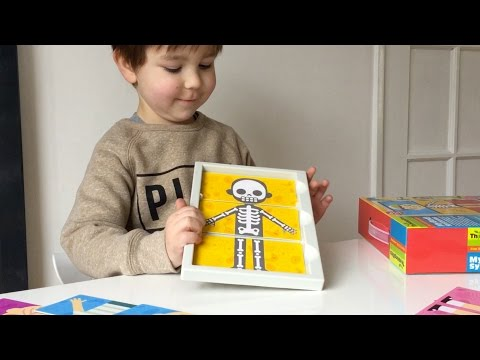 My Body Systems 4M – Educational Toys Reviews