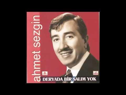 Ahmet Sezgin - Çalıkuşu
