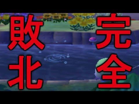 【とび森】とある激レア魚に完全敗北しました【PART170】