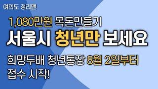 서울시 청년이라면 지금 가입하세요 / 저축액의 2배를 …