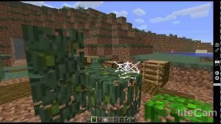 Faire un labyrinthe dans Minecraft