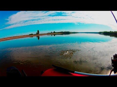 Рыбалка на реке Обь июнь 2019 год