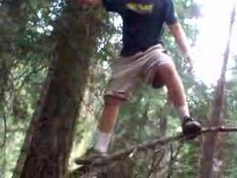 guy falls out of a tree - YouTube