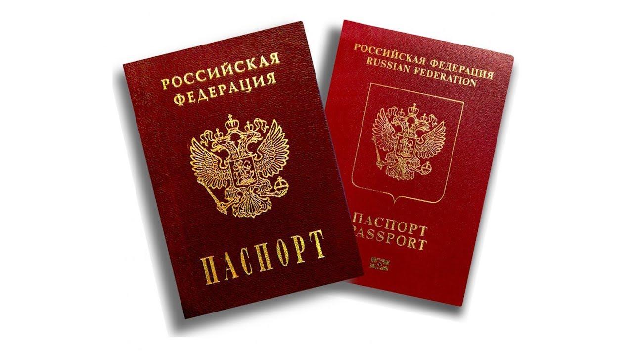 Порядок получения гражданства РФ жителями ДНР