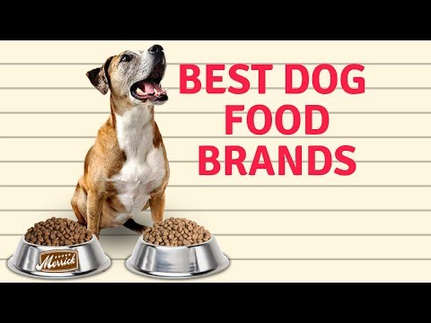 best-dog-food-brands-|-which-the-best-healthy-dog-food-brands???
