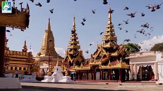 Plan a Tour to Thailand with Sand Pebbles Tour N Travels