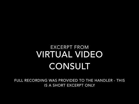 Excerpt from Virtual Video Consult