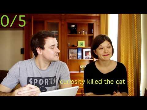 кошки видео цгоавиох гздььлд флдш3фоь