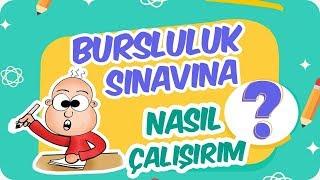 Bursluluk Sınavını Kazanmak için Bu Videoyu İzle!