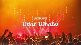 Unicorn Heads - Vital Whales