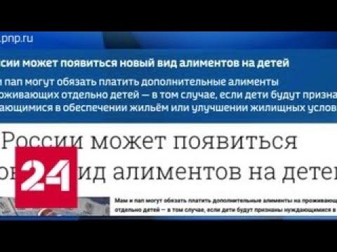 Минюст придумал новые алименты: мнение адвокатов - Россия 24